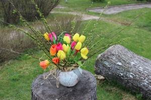 Pavasara tiergs Borovajā_1